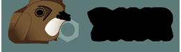 Logo sayr