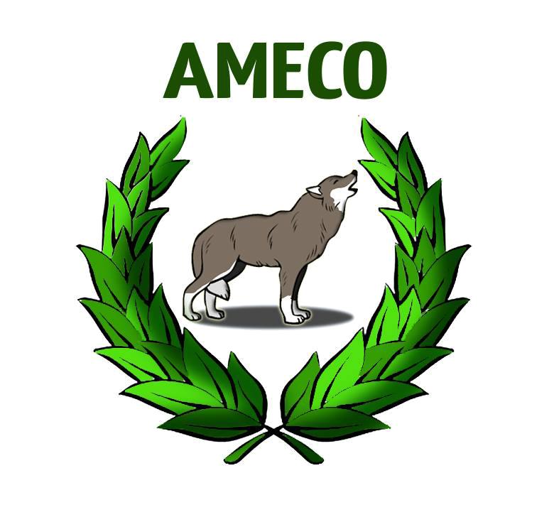 amecoLogo